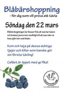 Anna Nimander Pflanzl gör en del affischer till Eslövs ridklubb.